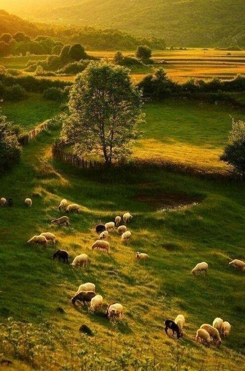 faire un roadtrip dans les Highlands, Scotland