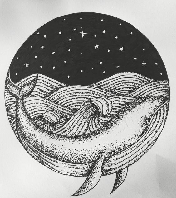dotwork sketch of a humpback whale ❤️