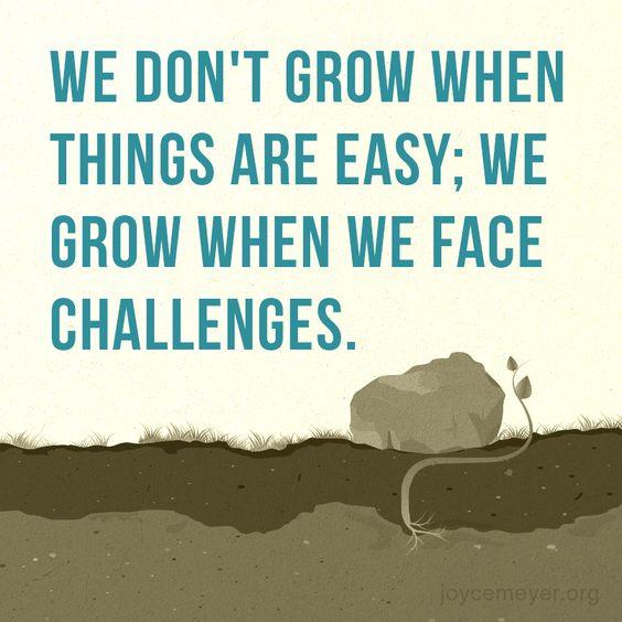 Essays on life challenges