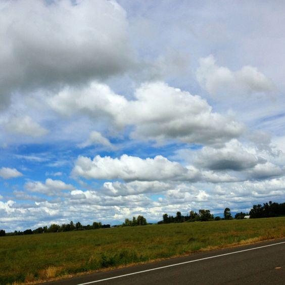 6/23/12 mid afternoon near Halsey Oregon photo by ken lamb