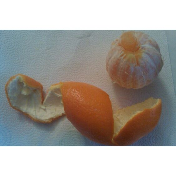The perfect peel!!!  Learn the importance of adding fruits into your diet.  www.orbitalathletics.com