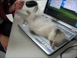 a hard day at the office..