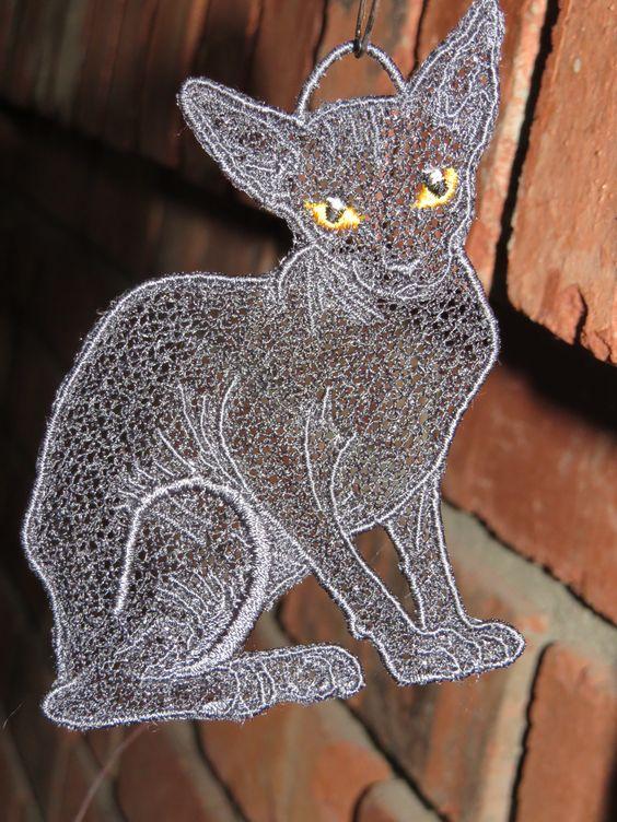 gray sphynx cat