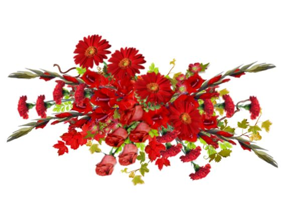 flowers, flores, flowers, bloemen, png: