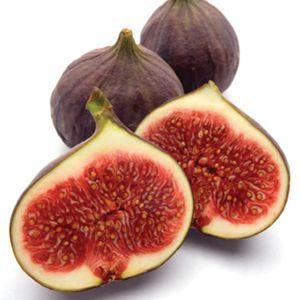 Brown Turkey Fig ... http://www.monrovia.com/plant-catalog/plants/1256/brown-turkey-fig.php