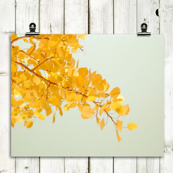 Falling Leaves Wall Decor : Nature photography fall leaves modern home decor wall