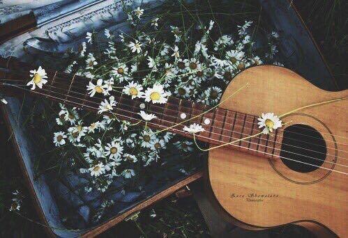 Y si tocamos la guitarra...???  66021b540089bdf694acbf8ac59186df