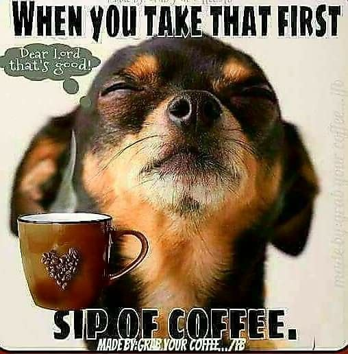 Pin By Rose Lopez On It S Coffee O Clock Somewhere Coffee Quotes Funny Coffee Humor Coffee Quotes
