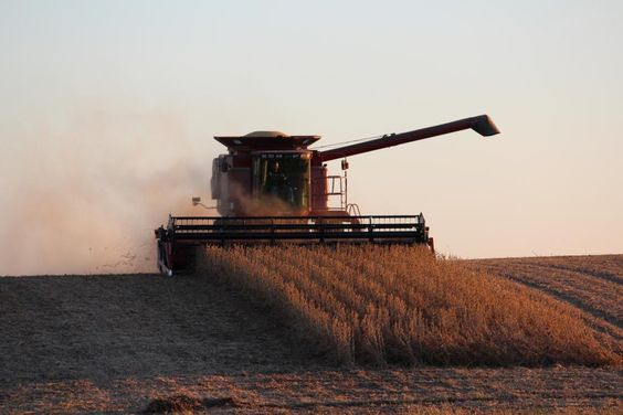 Don't 4get 2 snap pics this harvest season 4 the AFBF Photo contest! This pic by Tina Witte http://www.fb.org/programs/photocontest/ …