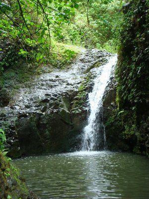 maunawili falls.. fav hike in hawaii