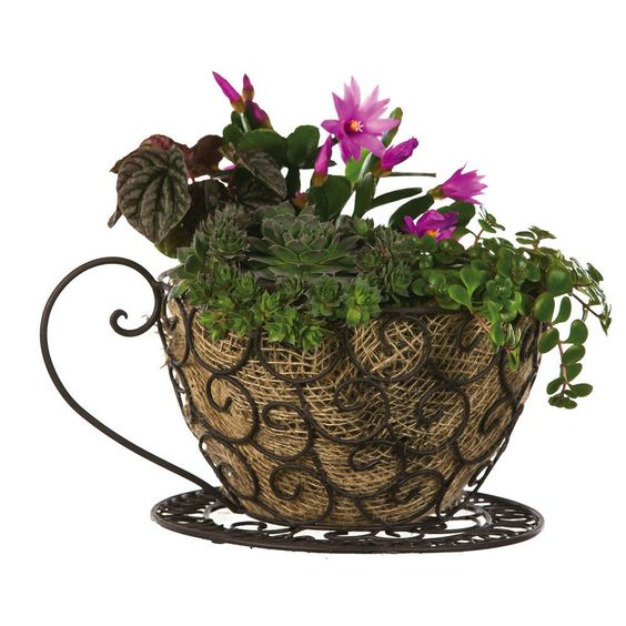 Coffee Cup Scroll Planter #GiftedLiving