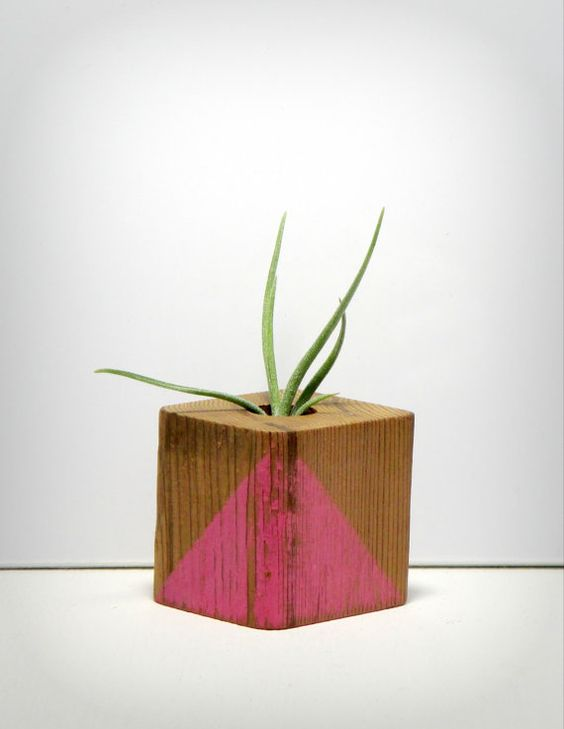 Air Plant  Distressed Wooden Planter  Light Rose by SpiritandVine