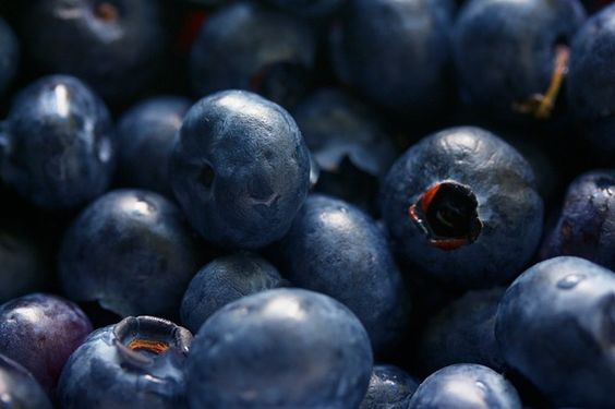The Bilberry Benefits. Bilberry reduces cholesterol, fights cancer, protects vision, improves diabetes, cardiovascular health and cognitive functions.