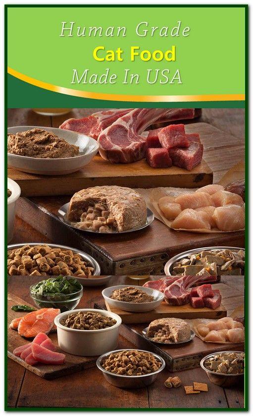 Human Grade Cat Food Made In Usa Food Dog Food Recipes Sensitive Stomach Cat Food