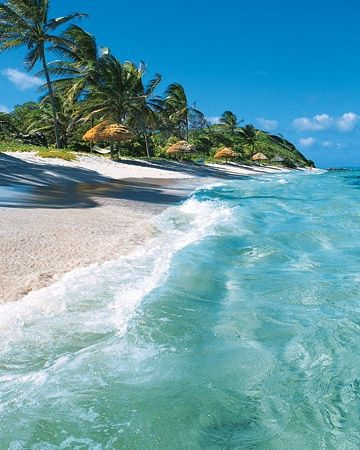 The most beautiful beaches in the West Indies ( St Vincent and the grenadines )