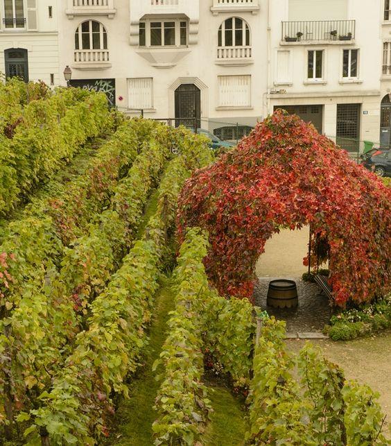 Montmartre , Paris vue de l'appartement de mon enfance: