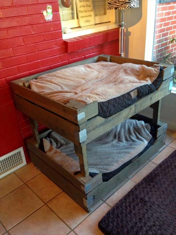 it would be fun for your dogs to reach the higher portions of this hand-built bunk bed of your dog! -- 40+ DIY Pallet Dog Bed Ideas - Don't know which I love more | 101 Pallet Ideas - Part 2