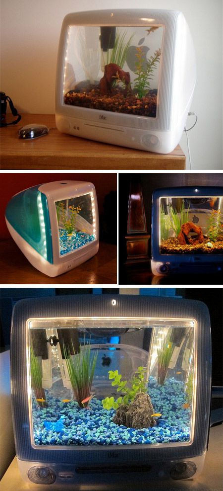 iMac Aquariums.. MacAquariums and iMacquariums are created for Apple fans around the world. Jake Harms transforms old Apple computers into eye-catching aquariums. Recycled iMac cases are fitted with custom designed fish tanks, bright lights, and high quality filters in place of the screen.
