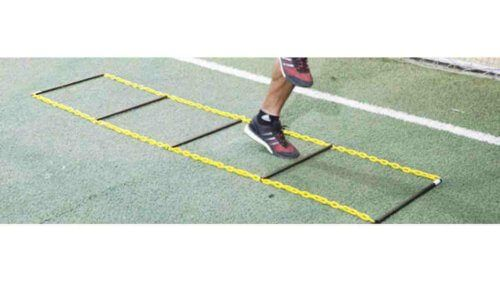 トレーニング 効果 ラダー