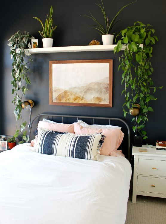 Bedroom Decor Simple Accent Wall Black Paint Shelf Plants And Art Are You Looking For Unique Small Apartment Bedrooms Small Master Bedroom Apartment Decor