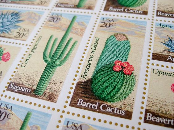 Vintage cactus stamps