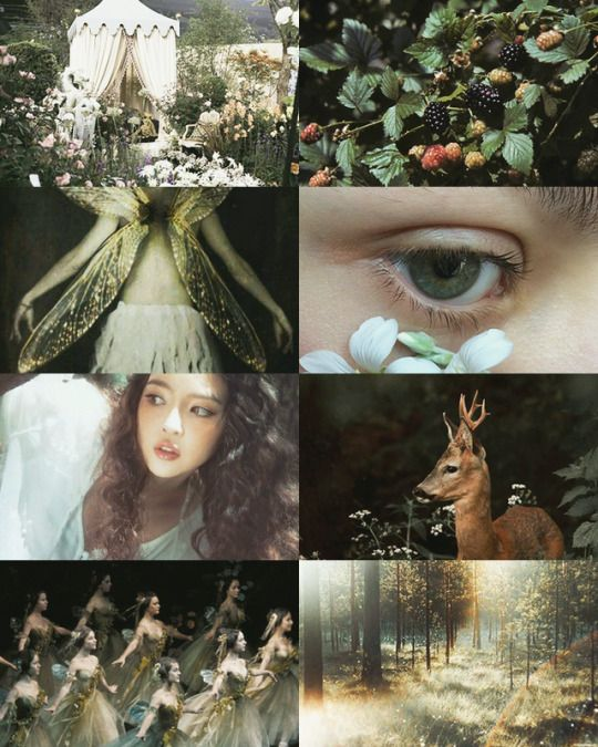 Act V Artistic Rendering With Images Midsummer Nights Dream A
