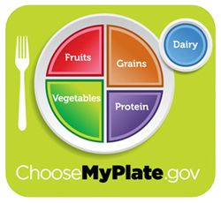 Image: ChooseMyPlate.org plate that illustrates the five major food groups.