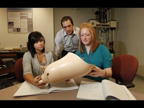 Biomedical Engineering Jobs Biomedical Engineering Jobs Entry - biomedical engineering job description