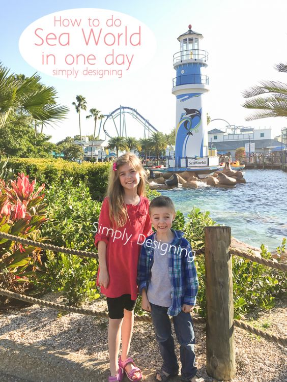 How to do Sea World in one day by Simply Designing
