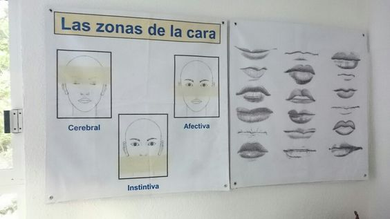 Lectura rostro
