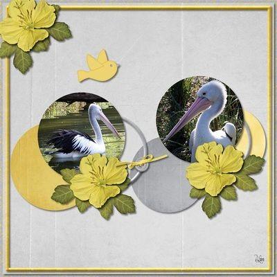 Gallery - Grace Blossoms 4 U