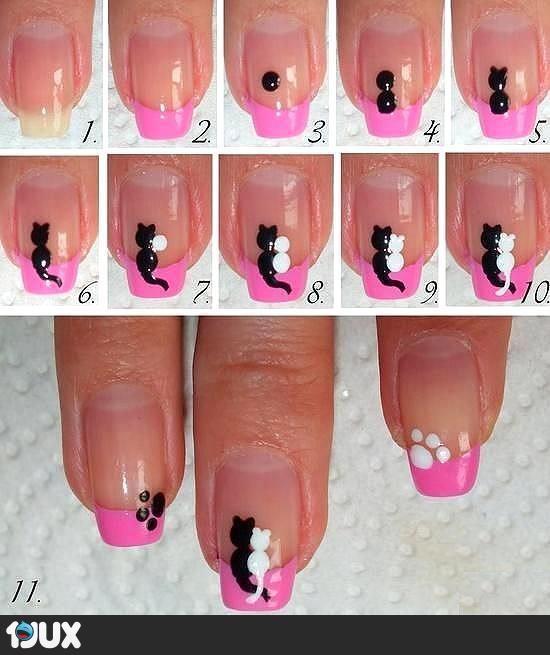 Katzen Fingernägel
