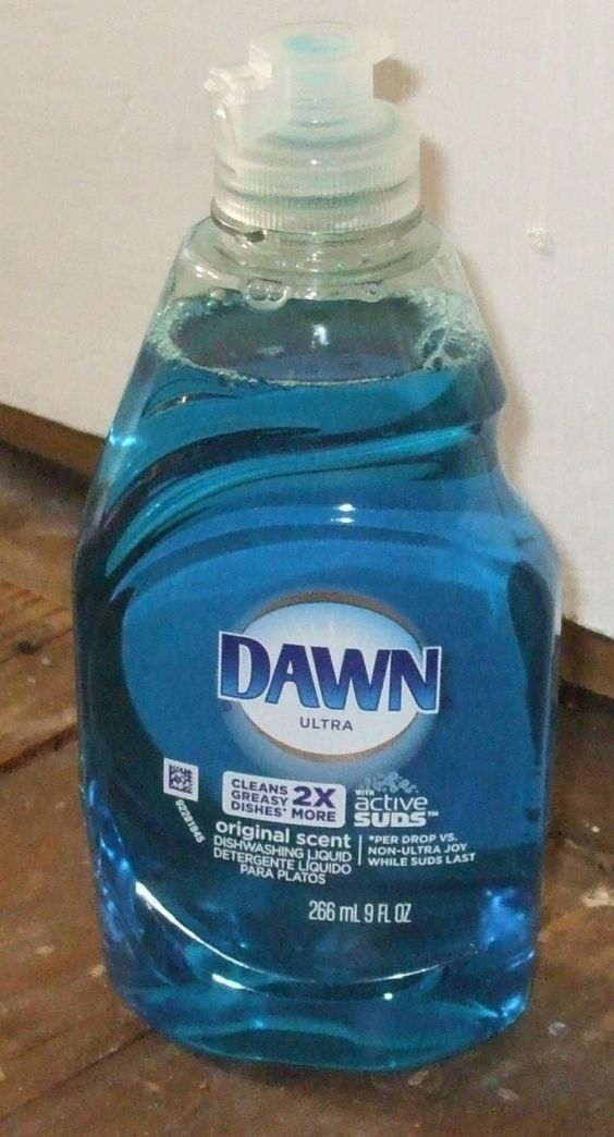 how to kill fleas on dogs with dawn dish soap