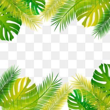 Simple Fresh Tropical Palm Leaf Border Originality Leaf Palm Leaf Border Png Transparent Clipart Image And Psd File For Free Download In 2020 Tropical Frames Flower Frame Palm Tree Png