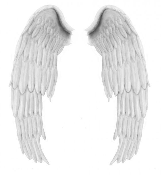 angel wings psd - photo #4