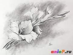 Картинки природы рисуем карандашом
