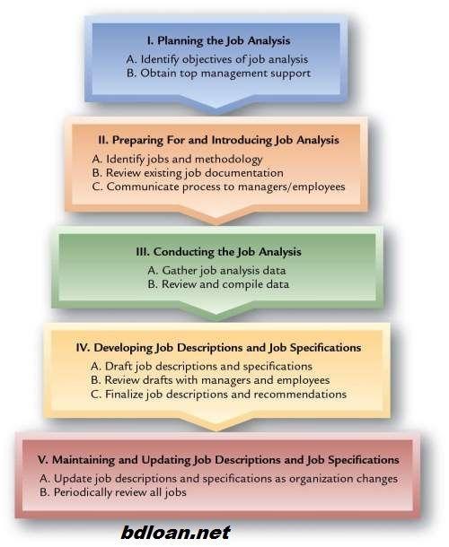 Human Resources Management Job Analysis part five BUSINESS - job analysis