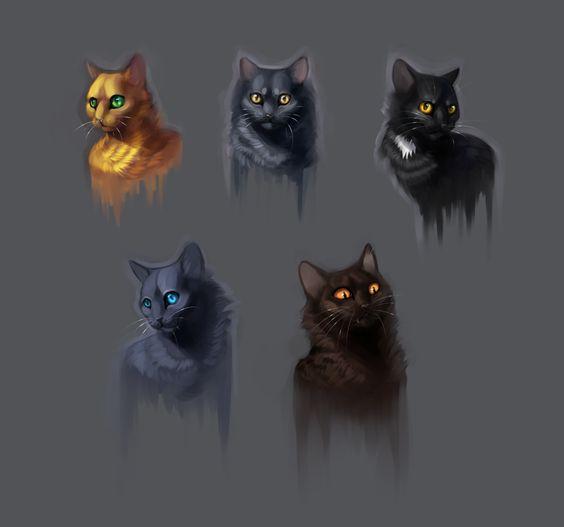 firestar graystripe ravenpaw blustar tigerstar warrior cats pinterest cats art and. Black Bedroom Furniture Sets. Home Design Ideas