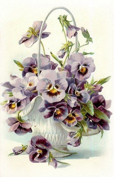 Basket of pansies: