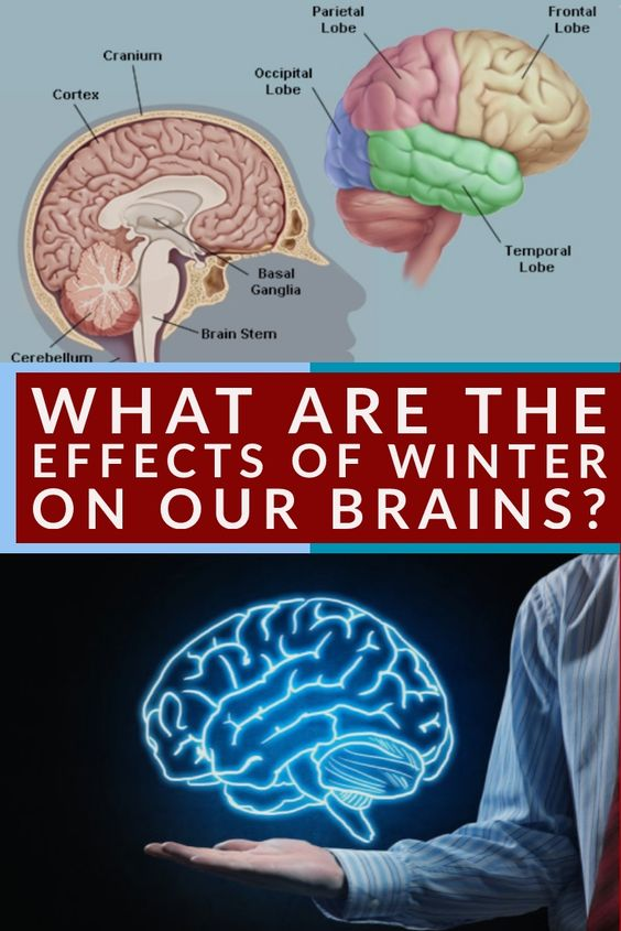 American researchers have shown that prolonged exposure to low light, imitating the cloudy days of winter or low indoor lighting, decreased the ability to remember and learn in 30%.