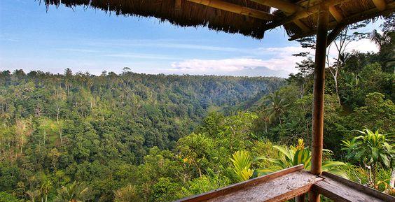 View, Nandini Bali Jungle Hotel, Ubud, #Indonesia #luxuryhotel #purist #theone