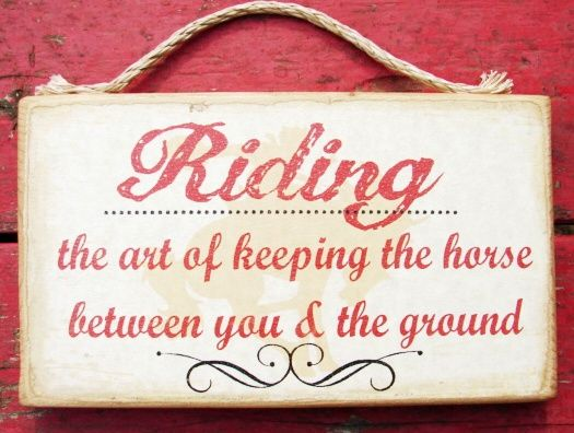 Riding  the art of keeping the horse between you and the ground