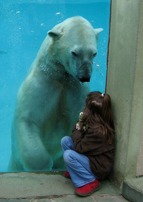 Bear meets girl.
