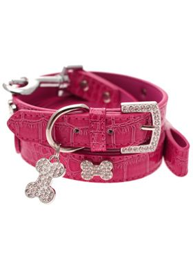 Cute pink leather collar!