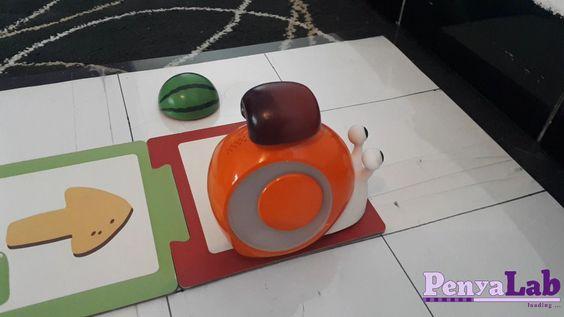 Qobo emparella fruites