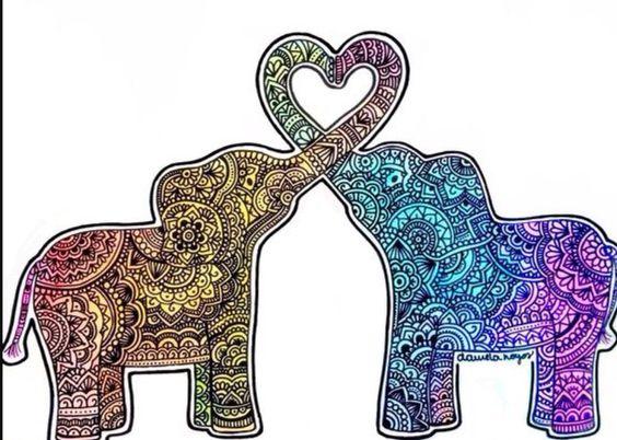 We love 🐘🐘
