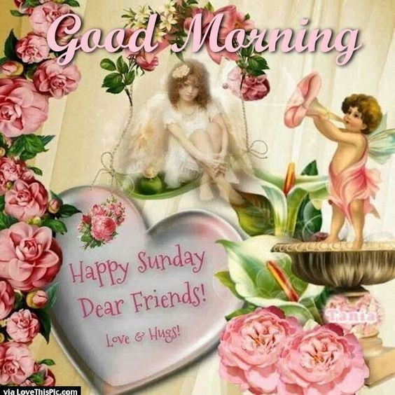 Good Morning My Beautiful Friend Quotes: Good Morning Happy Sunday Dear Friends Good Morning Sunday