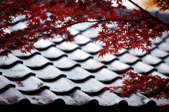 Beautiful Japan - Ilko Allexandroff Photography