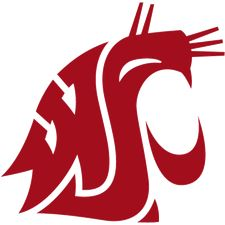 Washington State Football Team logo