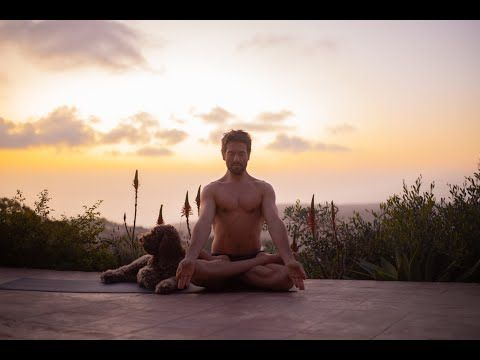 15 Minutes Day 7 Meditation And Breath Work Pranayama Yoga With Tim Youtube In 2020 Pranayama Pranayama Yoga Work Meditation